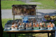 Smažení vajec